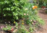 Gardener's Plot