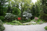 Native Plants Garden - New York Botanical Gardens
