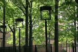 Oak Tree Stand