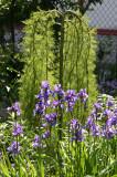 Siberian Walker Tree & Iris Stand