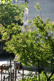 Smoke Tree at the Arch