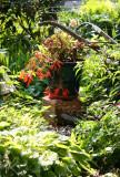 Garden View - Hosta, Red Fuchsia, etc.
