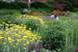 Park Gardener