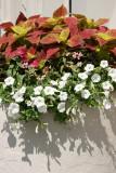 Sidewalk Garden Planter