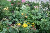 Mixed Flower Garden