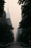 Daybreak - Lower Fifth Avenue