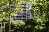 Summer - Sasaki Garden