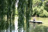 Summer - Central Park Lake