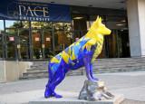 Guard Dog - Pace University at Center Street