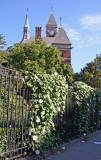 Moonflower Fence & NY Public Library