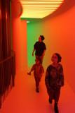 neon fun-1