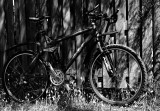 ma bicyclette