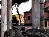 rome1_06.jpg