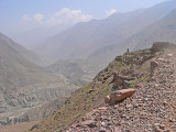 KKH and the Indus far down (left) - 201.jpg
