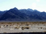 165-Mojave Hills.jpg