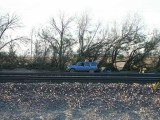 242-Morning Jeep, tracks, and tamarisk.jpg