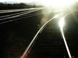 244-Morning sun on eastern rails.jpg