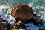 Sea sculptures!!!