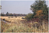 Cherokee Marsh - Early 1990's