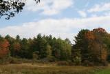 fall_2007.jpg