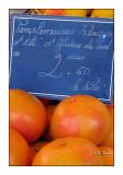 Grapefruits - 0229