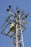 Karadut 2006 09 1666.jpg