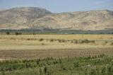 To Adana 2006 09 1769.jpg