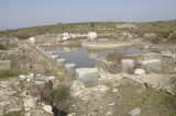Miletus 2007 4567.jpg