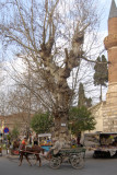 Akhisar 6193.jpg