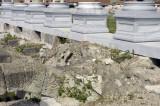 Izmir 2007 6261.jpg