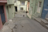 Izmir 2007 6308.jpg