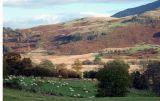 Around the Derwent Valley