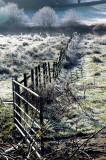 Frosty Fields of Cumbria