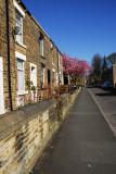 Glossop Houses