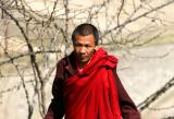 monk gardener