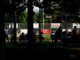 Evening game in the park