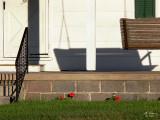 Back porch faces east