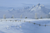 Winter at the Grand Teton.jpg
