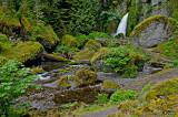 Wachlella Falls.jpg