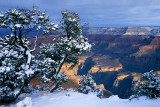 Snowfall at Grand Canyon.jpg