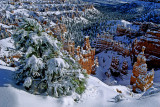 Winter in Bryce Canyon.jpg
