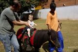 Meu primeiro poney