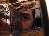 Into a Glass Box.jpg