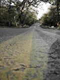 Worn Road Stripe.jpg