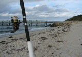 Hook Line and Sinker.jpg