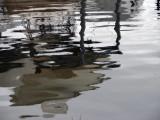 Random Water Reflection.jpg