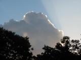 Sky Shadows.jpg