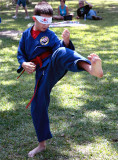 Danny Doing Forms front kick.jpg