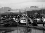 Seward Harbor 2 Black and White.jpg