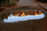 Arches Reflection.jpg